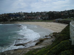 Surf wales spots