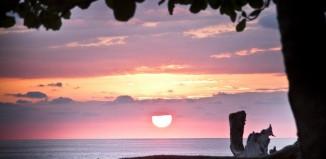 Costa Rica surf spots